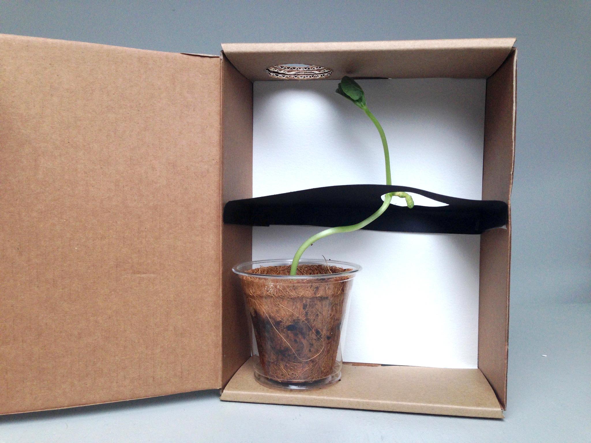 Plant Shelf Divider